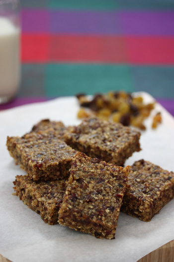 Grab_and_Go_Granola_Bars-snacks_201009021629593